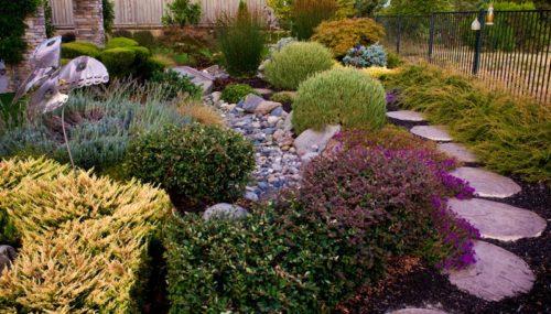 Landscape Design Suggestions