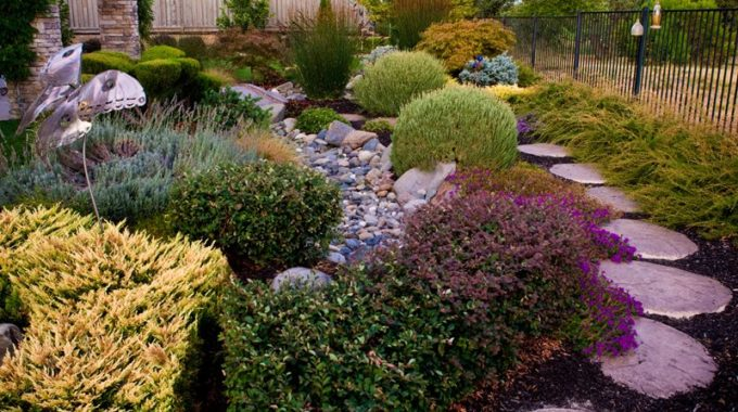 Landscape Design Suggestions
