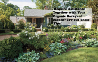 Require Assistance Together with Your Organic Backyard garden Try out These Tips