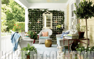 9 Beautiful Ways to Decorate Your House with Plants