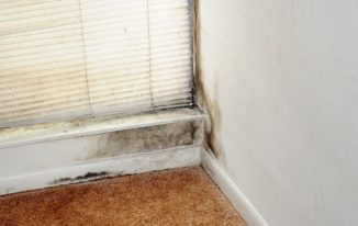 What Does Black Mould On Your Window Frames Mean?