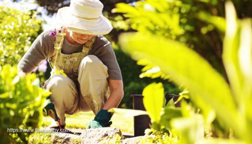 Protective Clothes For Outside Gardening
